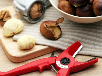 Scissors for chestnut